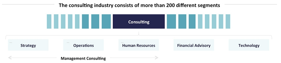 Consulting Industry - Segments