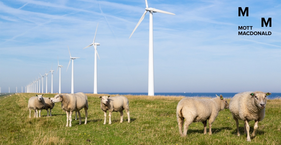 Mott MacDonald advised on Westermeerwind project, now open