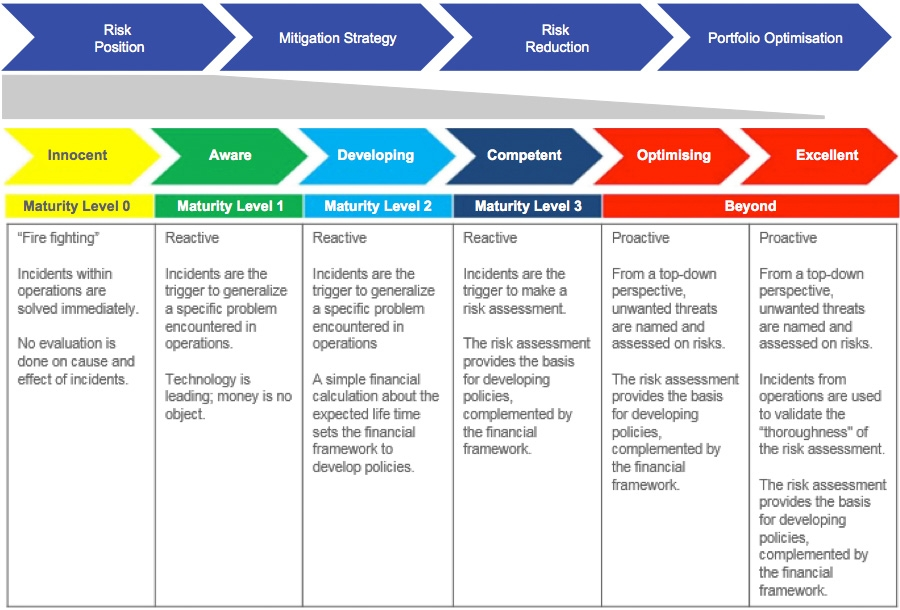 Maturity model for asset replacement programmes