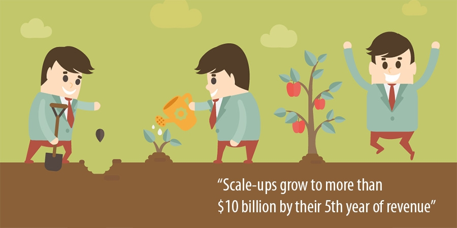 Scale-ups grow to more than $10 billion by their 5th year of revenue