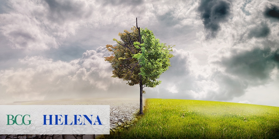 BCG and Helena join forces to run Helena Prize focused on climate change