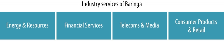 Industry services of Baringa