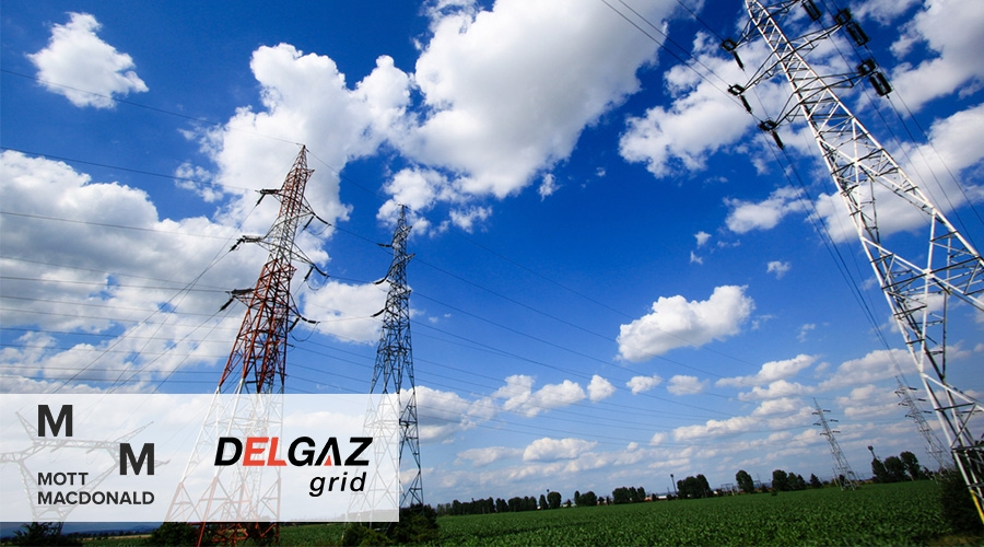 Mott Macdonald and Delgaz grid