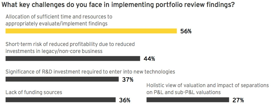 Key challenges faced in implementing portfolio reviews