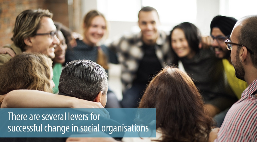 There are several levers for successful change in social organisations