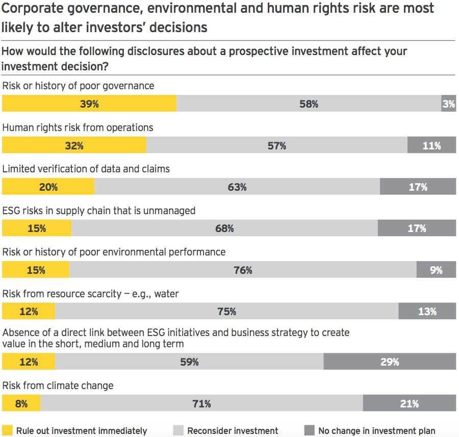 Risks affecting investment decisions