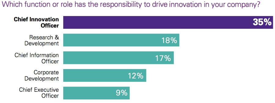 Which function or role has the responsibility to drive innovation in your company