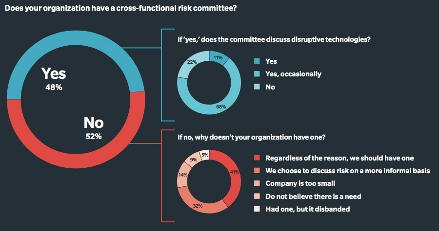 Cross-functional risk committee