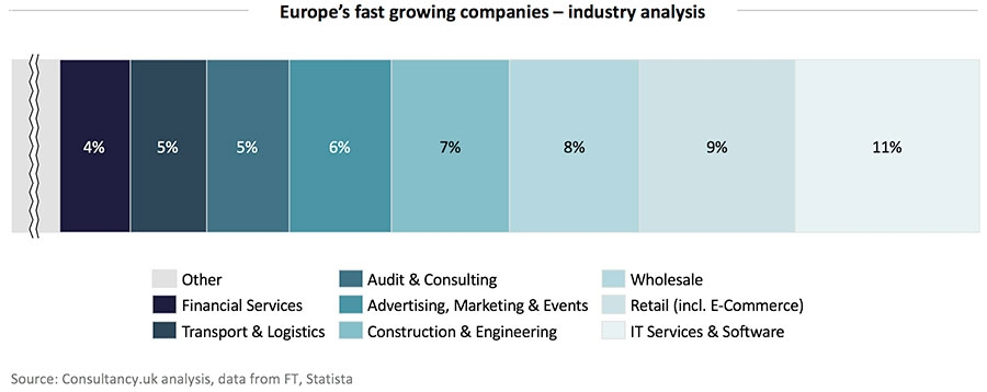 Europe's fast growing companies - industry analysis