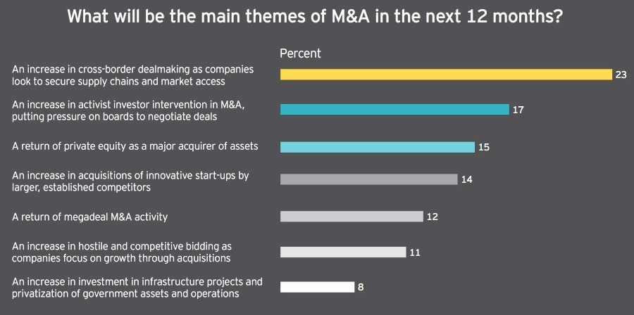 What will be the main themes of M&A in the next 12 months