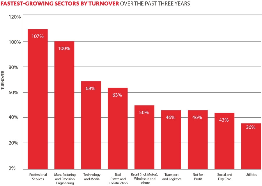 Fastest growing sector by turnover