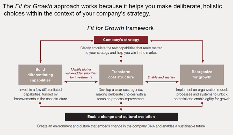 Strategy&'s Fit for Growth framework