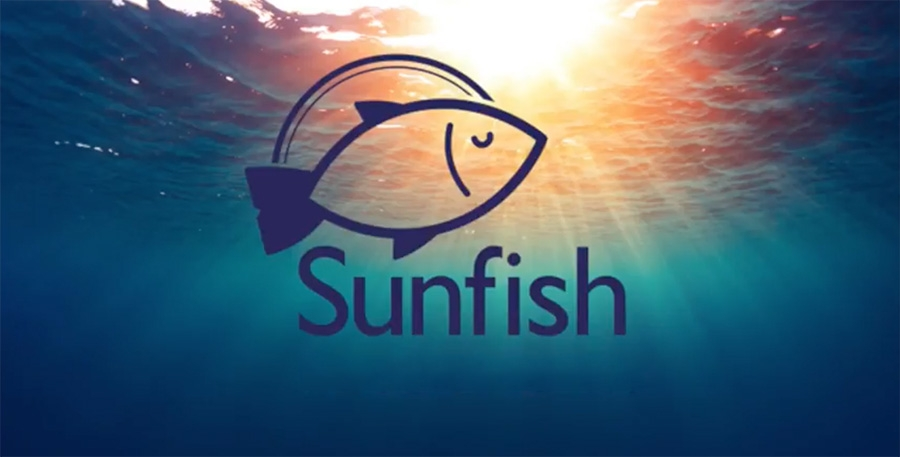 Sunfish Advisory sets sights on disrupting M&A consulting sector