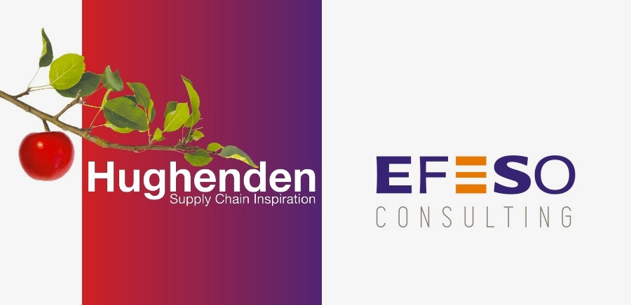 Supply chain consultancy Hughenden joins Efeso Consulting
