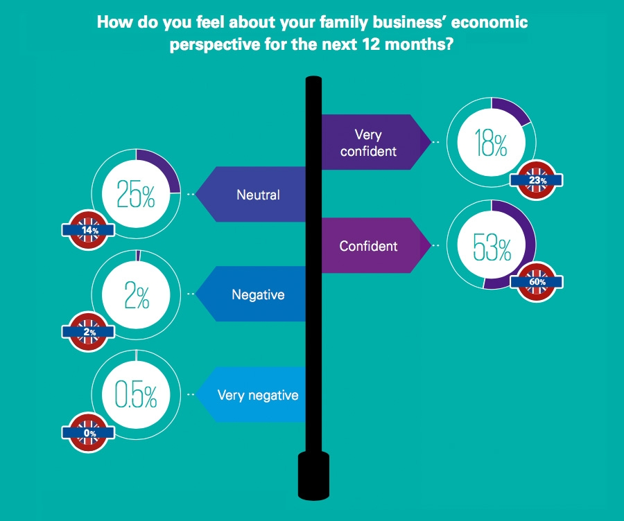 Family business economic perspective next 12 months