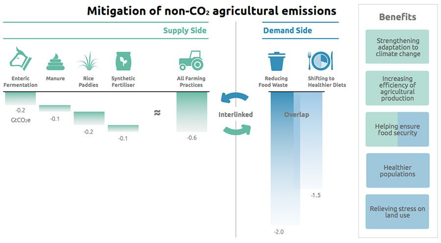 Mitigation of non-Co2 agricultural emissions