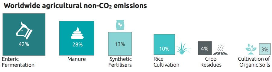 Worldwide agricultural non-CO2 emissions
