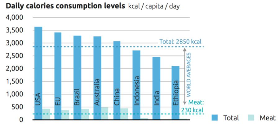 Daily calories consumption levels