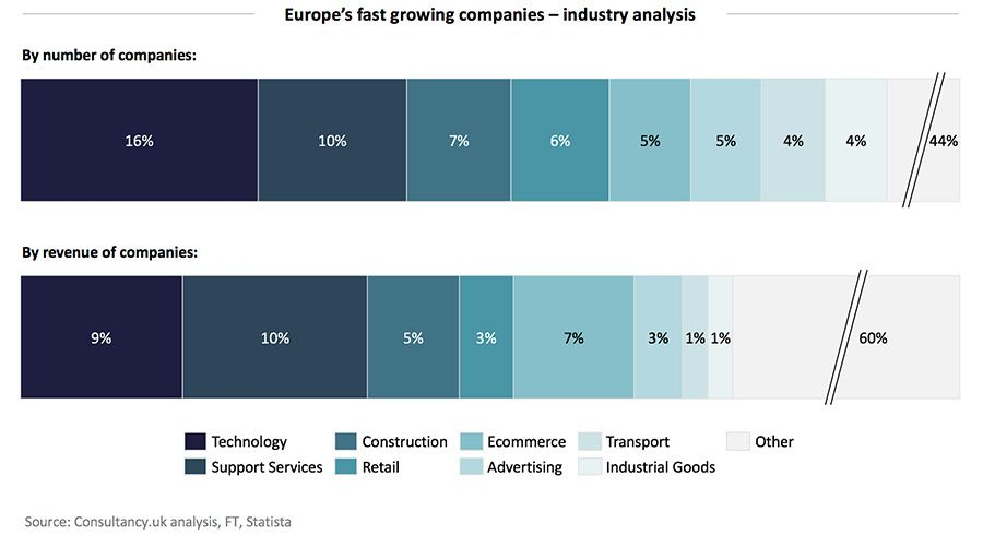 Europe's fast growing companies – industry analysis