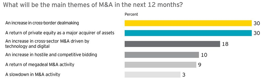 M&A themes next 12 months and major risks