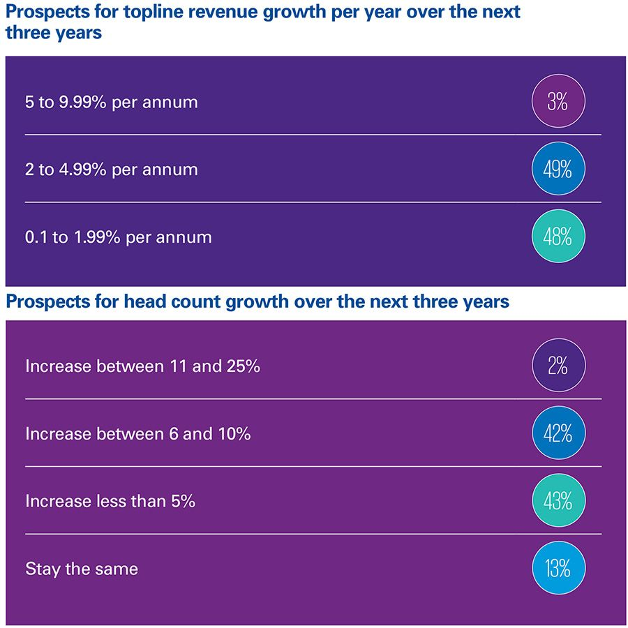 Prospects for topline revenue growth per year over the next three years