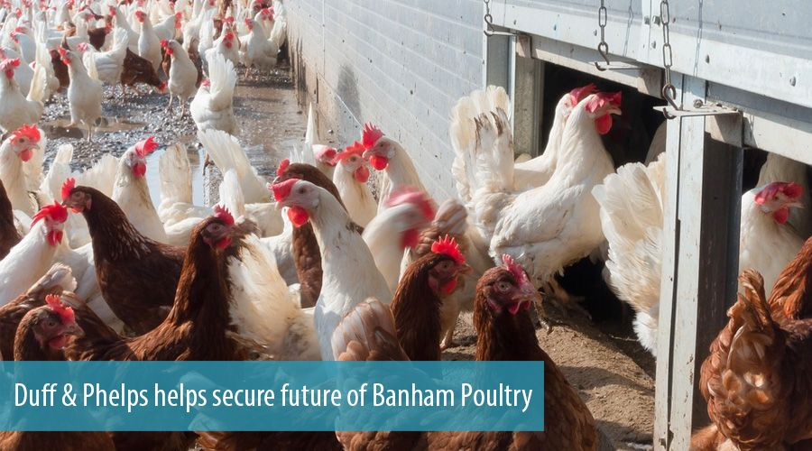 Duff & Phelps helps secure future of Banham Poultry