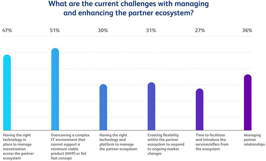 What are the current challenges with managing and enhancing the partner ecosystem