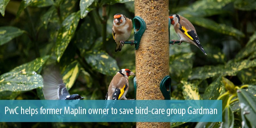 PwC helps former Maplin owner to save bird-care group Gardman