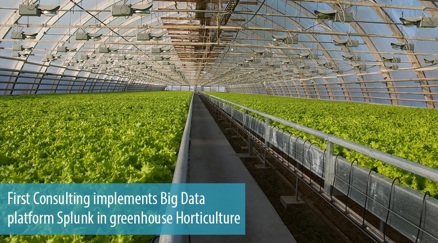 First Consulting implements Big Data platform Splunk in greenhouse Horticulture