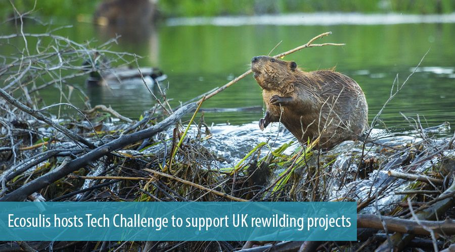 Ecosulis hosts Tech Challenge to support UK rewilding projects