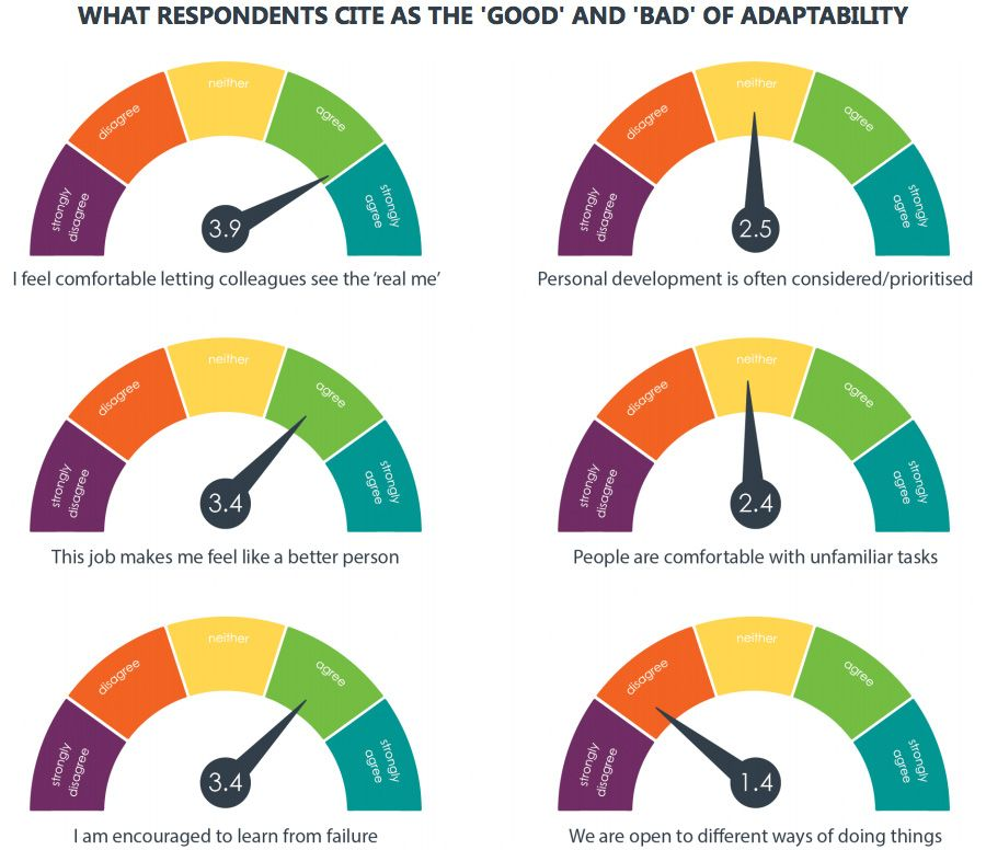 WHAT RESPONDENTS CITE AS THE 'GOOD' AND 'BAD' OF ADAPTABILITY