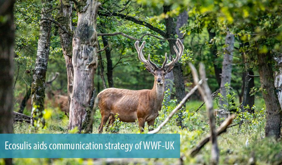 Ecosulis aids communication strategy of WWF-UK