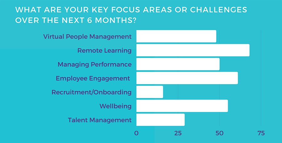 What are your key focus areas or challenges over the next 6 months