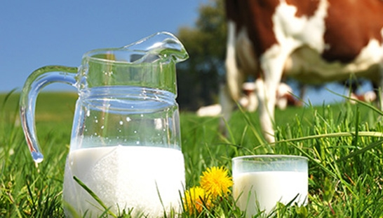 OC&C: Supermarkets to use low milk prices for edge