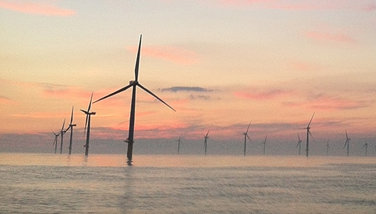 Royal HaskoningDHV assesses environmental impact of Scottish windfarms