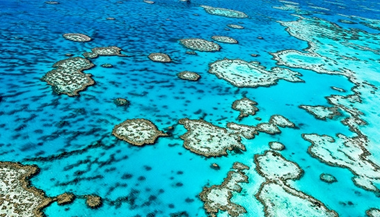 Australia's Great Barrier Reef natural wonder valued at A$56 billion