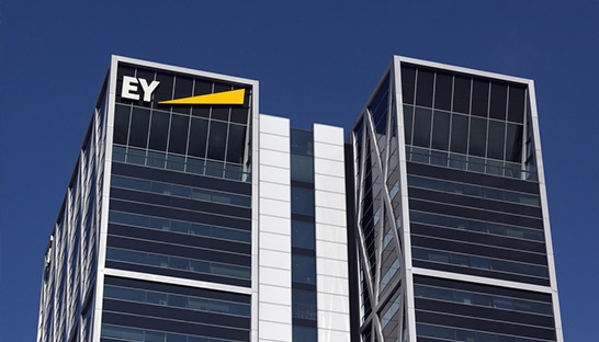 Accountancy and consultancy EY appoints 669 partners globally