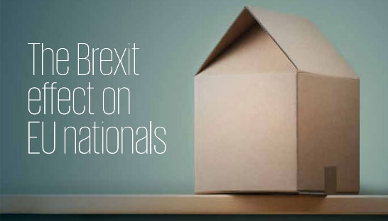 Highly skilled EU nationals consider Brexit of their own