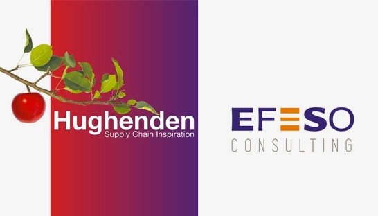 UK supply chain consultancy Hughenden joins Efeso Consulting