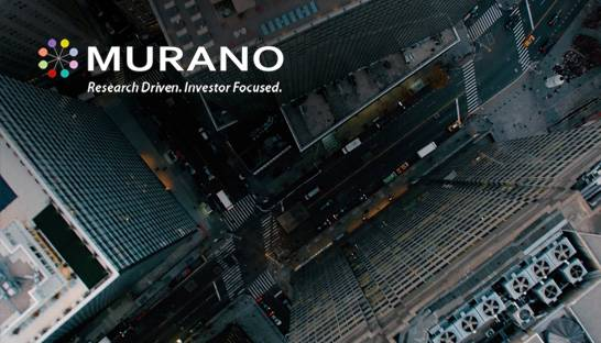 Investment matchmaker Murano launches consulting wing