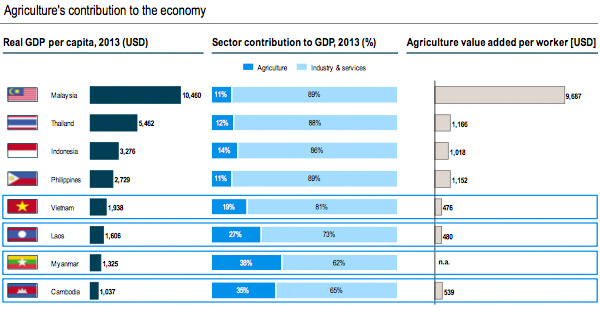 Agricultural contribution to the economy