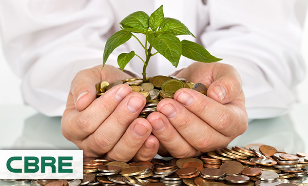 Businessman holding plant sprouting from coins