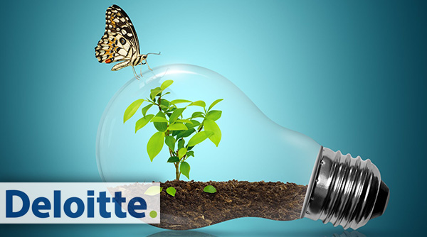 Deloitte Sustainability Services