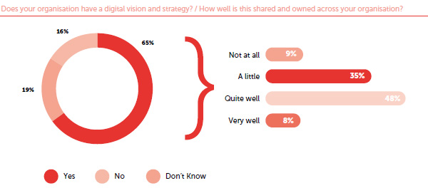 Digital strategy and vision among organisations