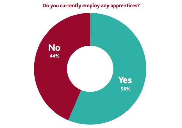 Do you currently employ any apprentices