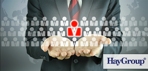 Hay Group - Human Resources
