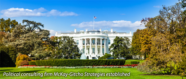 McKay-Gitcho Strategies established