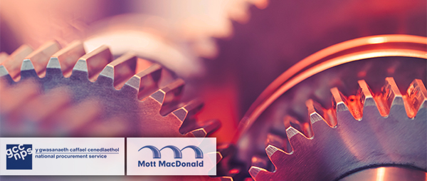 Mott MacDonald hired by the National Procurement Service