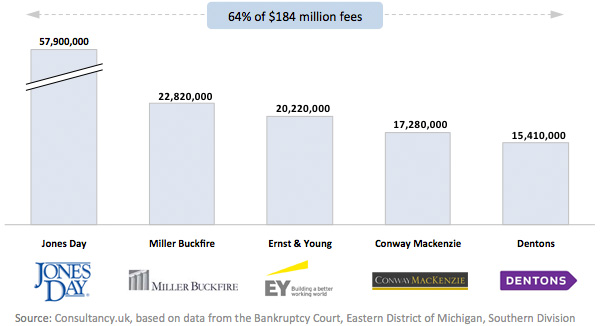 Fees paid to consulting firms