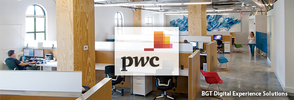 PwC - BGT Digital Experience Solutions